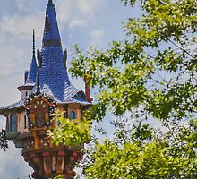 Rapunzel's Tower by seira77
