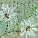 Daisies Postcard 1 by Maree Clarkson