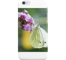 Green-veined white  iPhone Case/Skin