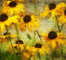 Mellow Yellow by pat gamwell