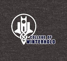 College of Winterhold Hoodie