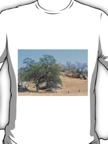 California drought summer 2014. Landscape picture of dry mountain yellow land and trees. T-Shirt
