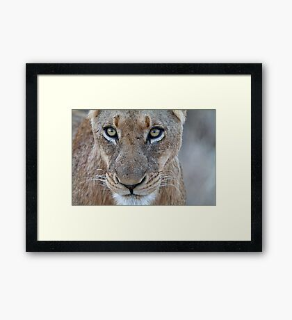 Look Into My Eyes.... You Are Getting Sleepy... Framed Print