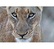 Look Into My Eyes.... You Are Getting Sleepy... Photographic Print