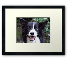 What about Bob! Framed Print
