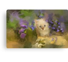 Peek a Boo Canvas Print