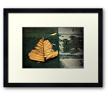 Pave the way Framed Print