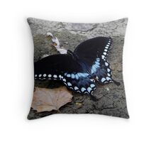 This Black Beauty Has Wings Throw Pillow