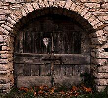 The door by contemod