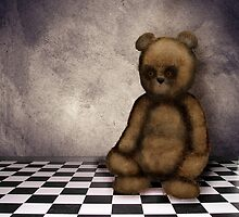 Stare Bear by Cathie Tranent