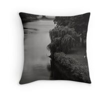 Silver runs the age of this water Throw Pillow