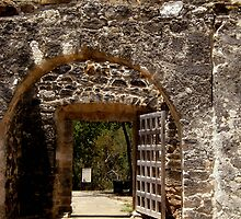 Spanish Missions by Shiva77