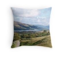 Meandering Mull Throw Pillow