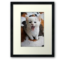 I Iz Dog Framed Print