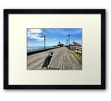 'Scuse Me.  Is This the Way to the Zoo? Framed Print