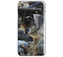 """Vision Quest""  Grey Wolf iPhone Case/Skin"