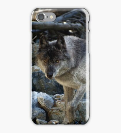 """""""Vision Quest""""  Grey Wolf iPhone Case/Skin"""