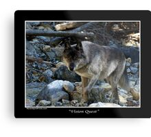 """Vision Quest""  Grey Wolf Metal Print"