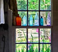Bottles on Kitchen window by Susan Savad