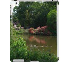 Summer lakes iPad Case/Skin