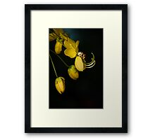 Wise Knights Framed Print