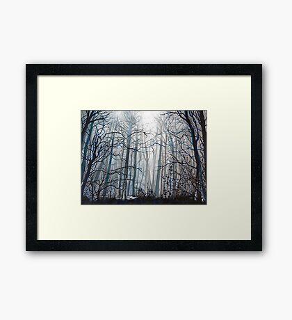 'Fog Descending' Framed Print