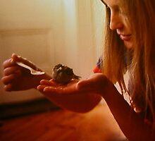 little sparrow by Alenka Co