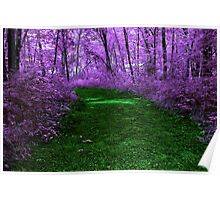 Mystical Path in Purple Forest Poster