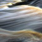 Smokey River by David Piszczek