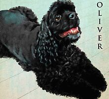 """""""Tulsa Oliver"""" by kcd-designs"""