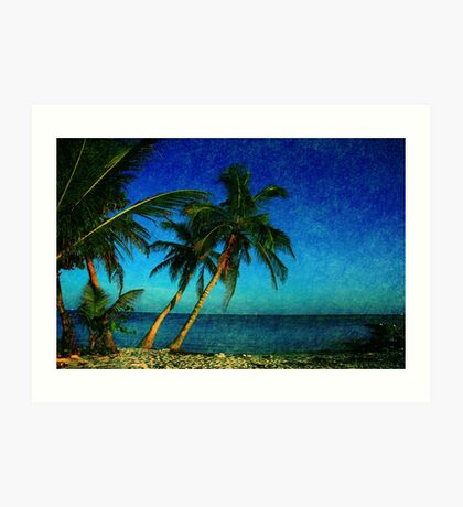 Palm Trees and the Beach in Key West Art Print