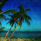 Tropical Paradise - Key West Florida by Susanne Van Hulst