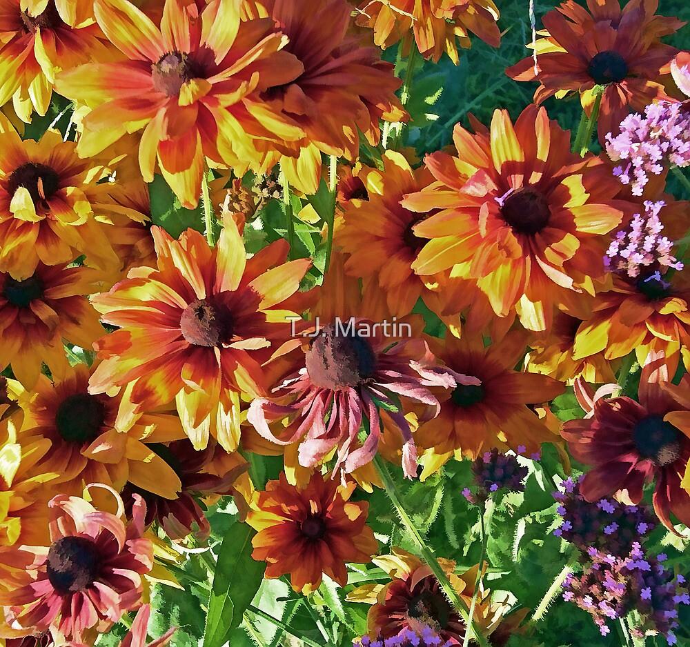 A Summer Flower Garden by T.J. Martin