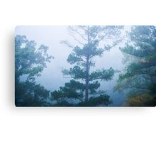 Cold and Mysterious Canvas Print