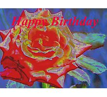 Peachy orange birthday rose Photographic Print