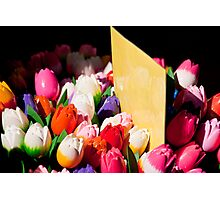 Carved Tulips Photographic Print