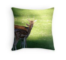 Nuzzling young Buck & Doe ..... Throw Pillow