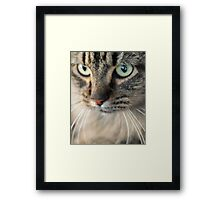 Mysterious Eyes Framed Print