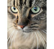 Mysterious Eyes Photographic Print