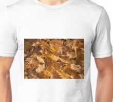 Golden Birch Leaves  Unisex T-Shirt