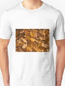 Golden Birch Leaves  T-Shirt