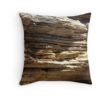Cambrian Ridges-Ancient Rock Throw Pillow