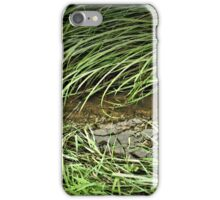 """""""A Streamlet Runs Through It""""... prints and products iPhone Case/Skin"""