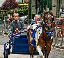 Trotting in Appleby by Tarrby