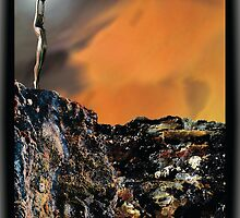 Mystical Dawn: The Offering by jennifer joy