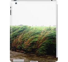 Wild Wind iPad Case/Skin