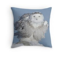Winter Coat Throw Pillow