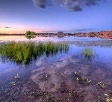 A Lake As Seen Through A Camera by Bob Larson
