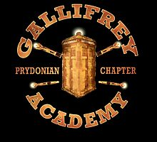Gallifrey Academy by BlueShift