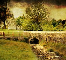 Downham Village by Catherine Hamilton-Veal  ©